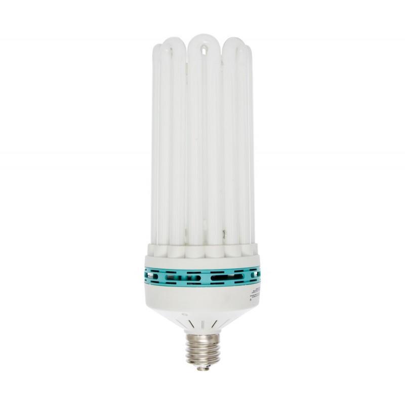 Agrobrite Compact Fluorescent Lamp  Dual Spectrum  200w