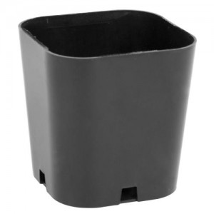 Super Sprouter Singled Out Propagation Pot 2 in 50perBag