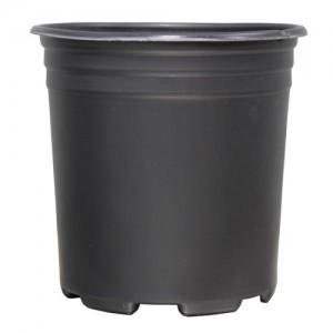 Thermoformed Nursery Pot 1 Gallon
