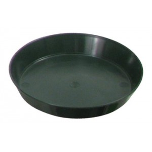 Green Premium Plastic Saucer 6 in 128perCs