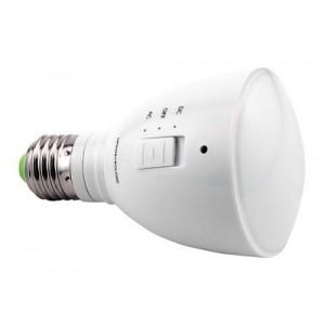 AgroLED 4 Watt Green FlashlightperLamp ACperDC Rechargeable 20perCs