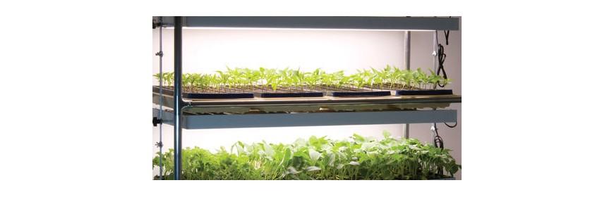 Clone / Seed Grow Cart
