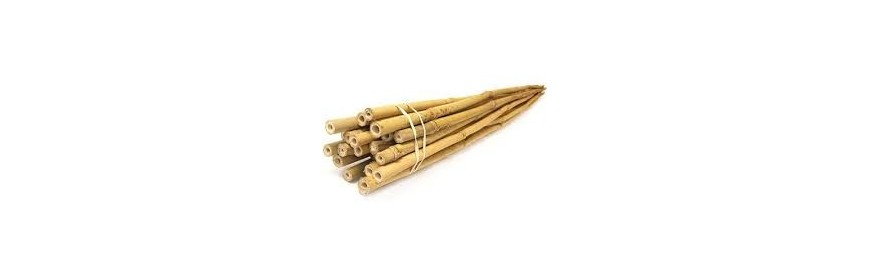 Bamboo Plant Stakes